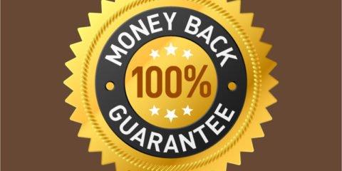 100% Money Back Guarantee Badge Design Free Vector File