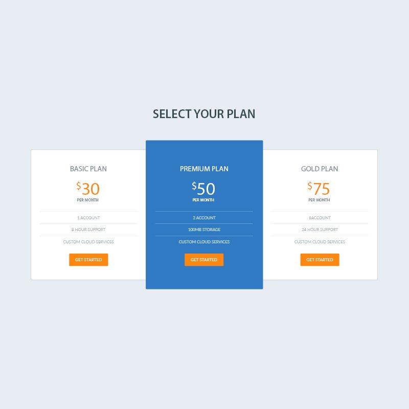 Elegant Pricing Table PSD Design for Website